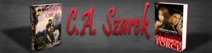 Chrissy Szarak banner